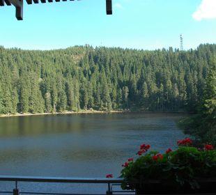 Blick vom Balkon über den See Berghotel Mummelsee