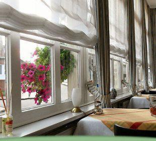 Blick aus der Veranda Hotel-Pension Haus Angelika