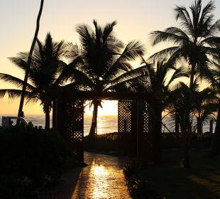 Der Weg zum Strand VIK Hotel Cayena Beach Club