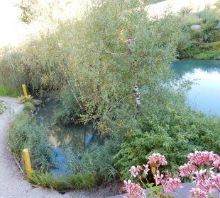 Vom Zimmer auf den Teich, sehr schön. Hotel Krallerhof