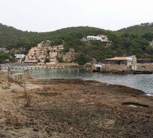 Felsstrand vorm Hotel Olimarotel Gran Camp de Mar