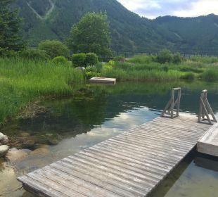 Schwimmteich Rieser's Kinderhotel Buchau