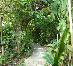 Weg zum Zimmer Hotel Pousada Naturalia