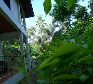 Die Terrassen mitten im Grünen. Guest House Green Garden House