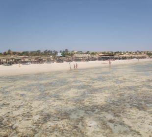 Strand vom Steg bei Ebbe
