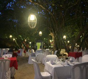 Junglerestaurant Dreams La Romana Resort & Spa