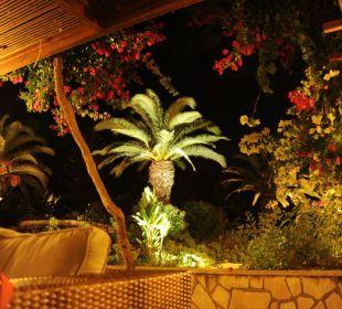 Nächtlicher Blick von der Hotelbar in den Garten