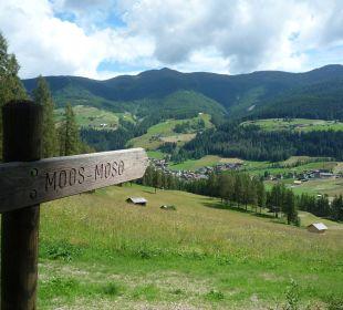 Ausblick auf Moos Biovita Hotel Alpi