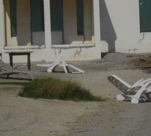 Liegen am Strand Hotel Flamingo Beach Resort