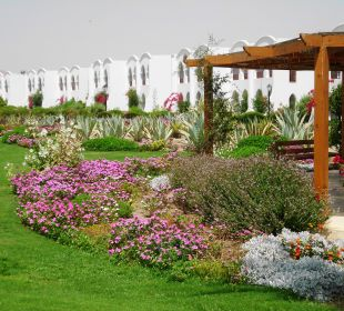 Gartenanlage Hotel Gorgonia Beach