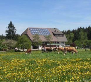 Oberjosenhof im Frühling Ferienbauernhof Oberjosenhof