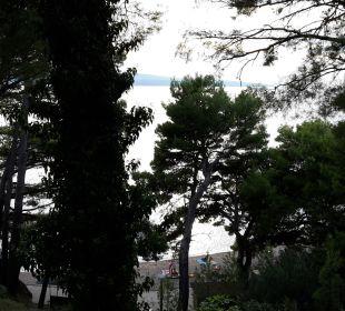 Vom Balkon durch die Bäume auf den Strand und Meer Bluesun Hotel Soline