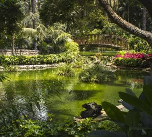 Take a moment to contemplate nature!  Hotel Botanico