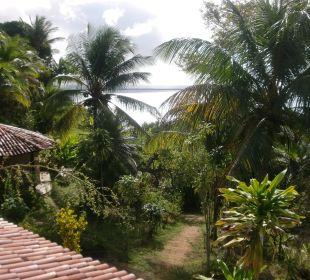 Ausblick vom Balkon Hotel Pousada Colibri