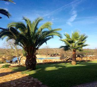 Gartenanlage Finca Es Pinaretta
