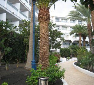 Von Gartenanlage zum Hotel VIK Hotel San Antonio