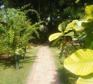 Im Garten Hotel Susantha Garden