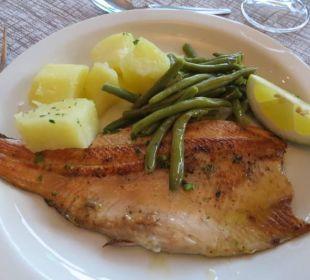 Hauptspeise: Fischgericht Hotel Bellavista