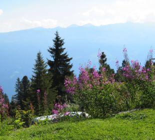 Blick vom Frühstückstisch der Wohnung Gedrechter Alpin-Ferienwohnungen Hochzillertal