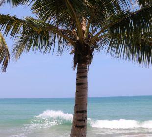 Blick zum Meer Hotel Chong Fah Beach Resort