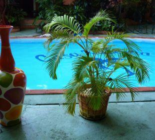 Der kleine, saubere Pool