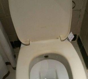 Das WC dreckig und überall Haare