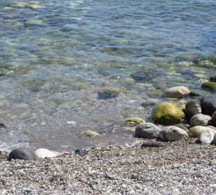 Sehr große Steine am Strand Hotel Champion Holiday Village