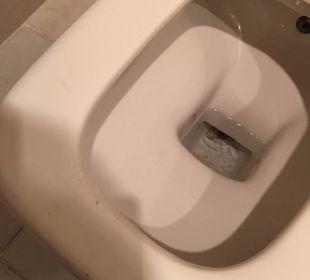 Verdreckte Toilette