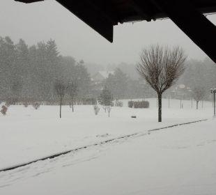 Aussicht Kaysers Tirolresort