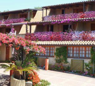 Camere tra i fiori Hotel L'Olivara Villaggio