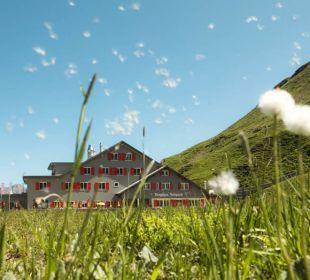 Das Bärghuis Jochpass im Sommer Berghaus Jochpass