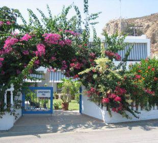Eingang Garten