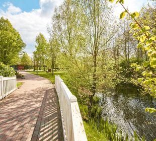 Gartenanlage  DJH Jugendherberge Alfsee
