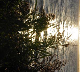 Blick aufs Meer bei Sonnenuntergang