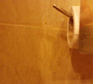 Wand hinter Toilette