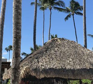 Strandbar Secrets Royal Beach Punta Cana