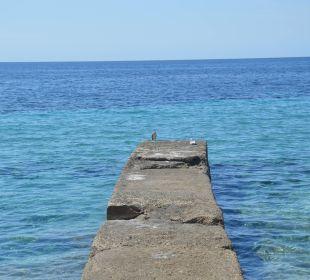 Blick au fen Steg vor dem Hotel Olimarotel Gran Camp de Mar