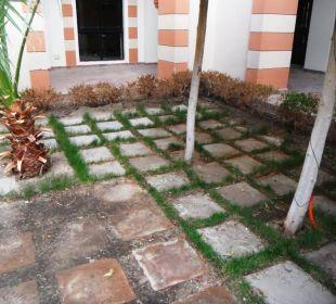 Gartenpflege innen Bereich