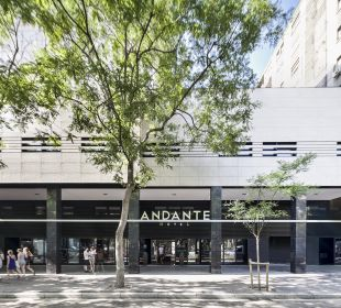 Lobby Hotel Andante