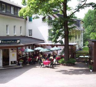 Biergarten im Hof Hotel Waldmühle