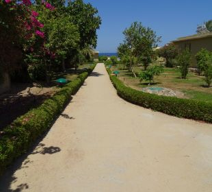 Weg zum Strand. Three Corners Fayrouz Plaza Beach Resort