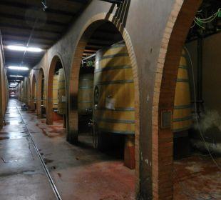 Neuer Weinkeller Hotel & Wine Resort Villa Dievole