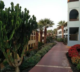 Hotelgebäude und Garten Hotel Barcelo Jandia Playa
