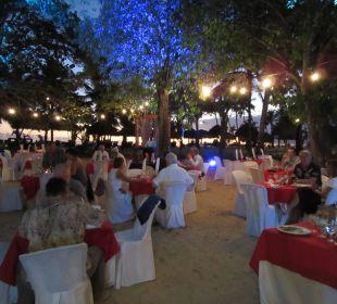 Im Junglerestaurant Dreams La Romana Resort & Spa