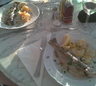 Hauptgericht bei Buchung von Halbpension Hotel Poseidon Bahia