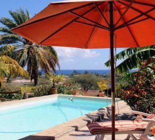 Pool mit Aussicht Gästehaus Bellevue