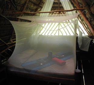 Detail Mango Hütte