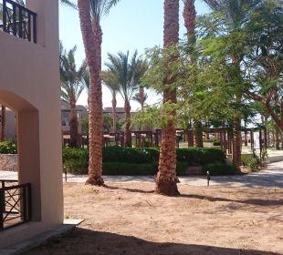 Ausblick vom Zimmer Hotel Iberotel Makadi Beach