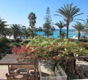 Blick vom Balkon in den Park zum Meer Hotel Nissi Beach Resort