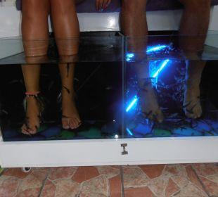 Rybí pedikúra Hotel Krizantem